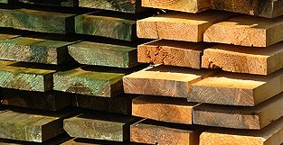 slapia mediena